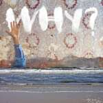 cover-why