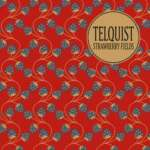cover-telquist